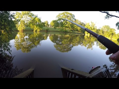 Thumbnail: Catching Catfish in a FLOODED NEIGHBORHOOD CREEK!