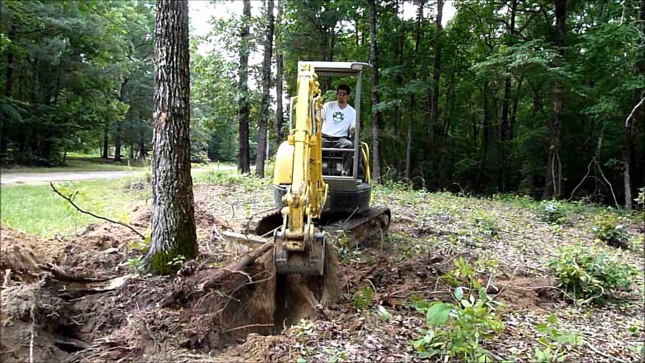 Mini excavator tree clearing