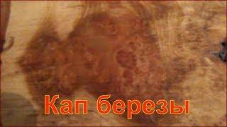 Березовый кап Огромных размеров Вес Капа 9 кг Продается  в вконтакте https://vk.com/public142130349