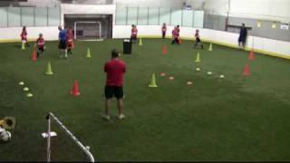 coach development series c a t s u7 1 of 4