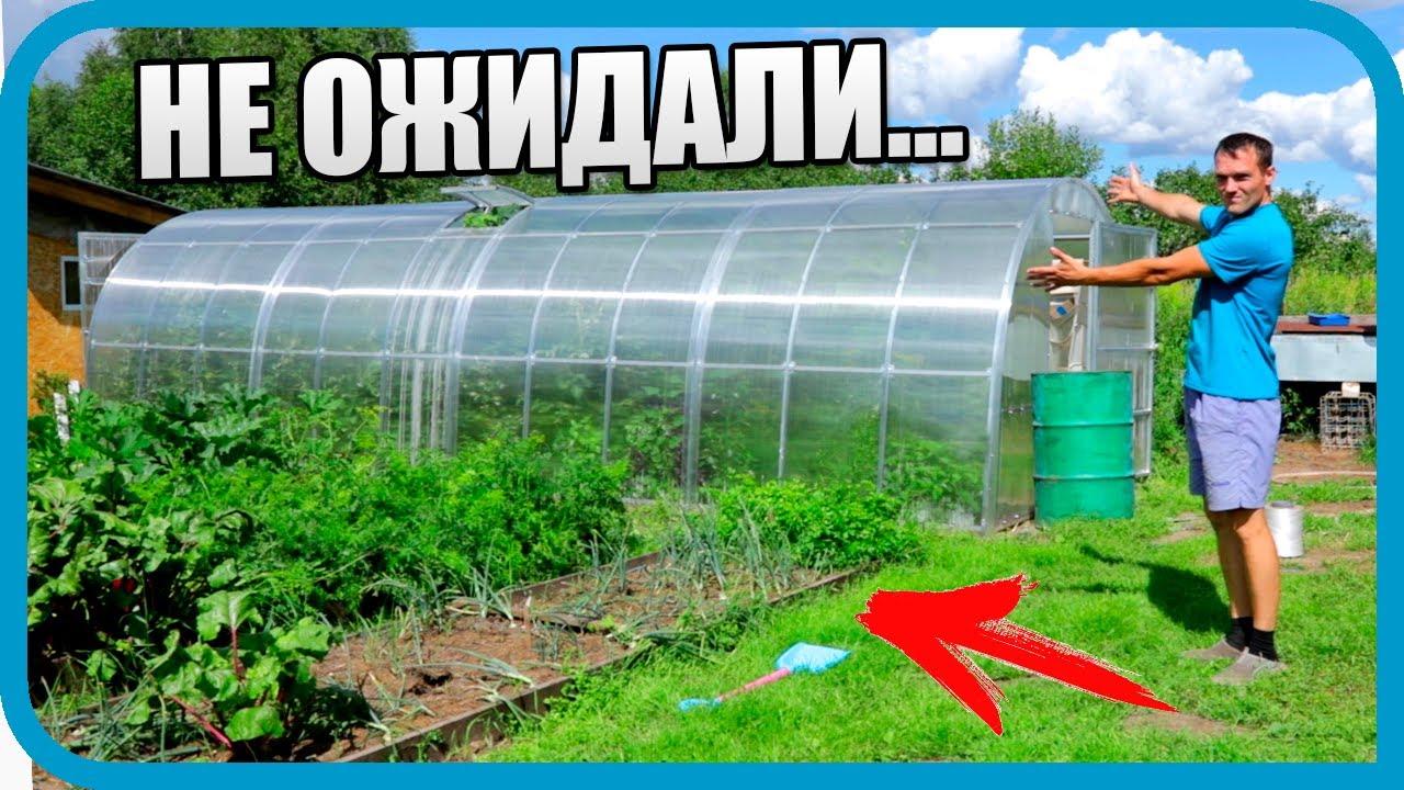 ТЕПЛИЦА 10 НЕДЕЛЬ СПУСТЯ! И НАШ МИКРО-огород!