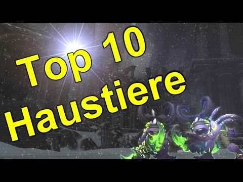 top 10 die besten haustiere in wow youtube. Black Bedroom Furniture Sets. Home Design Ideas