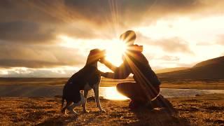 """""""Mina hundar betyder allt för mig"""" - Eva Bromée"""