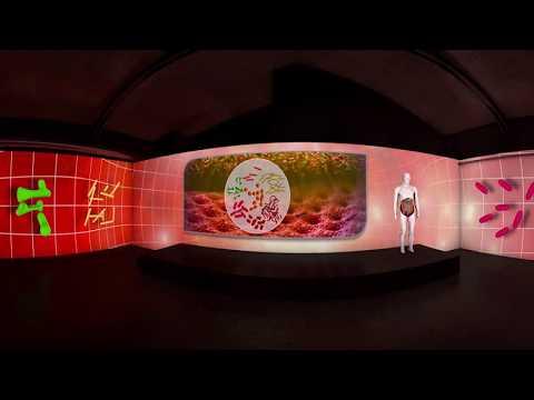 Animation 3D 360VR du microbiote intestinal _  Biocodex _ Arbracam Production Numérique