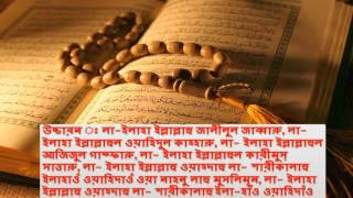 Quran, help tips bd ,  sex and health tips , entertainment news