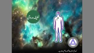 Ma'aad kya hai -   معاد کا علم کیا ہے اور قرآن میں معاد کا ذکر
