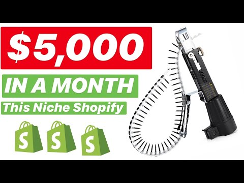 BEST Products TO SELL On Shopify ($5,000 IN A MONTH With This NICHE) thumbnail