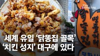 '치킨 성지' 대구에 숨겨진 찐 맛집 '닭똥집 골목' …