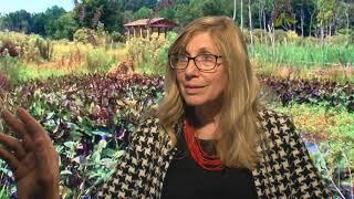 Greenable Woodbridge: Healthy Sustainable Lifestyle