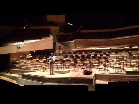 Siegfried Horn Call (Richard Wagner) - Felix Dervaux