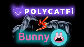HOW DOES POLYCAT FINANCE STACK UP AGAINST PANCAKE BUNNY? MEET MATIC PLATFORMS NEWEST DEFI STAR !