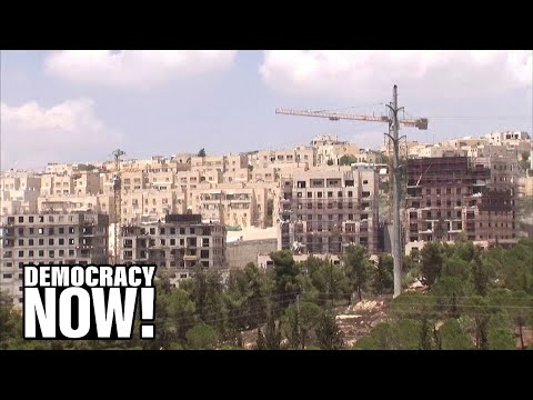 "Noura Erakat: U.S. Recognition Of Israeli Settlements Is ""Entrenchment Of An Apartheid Regime"""