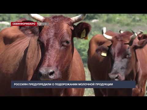 Россиян предупредили о подорожании молочной продукции