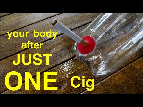 How Smoking Just 1 CIGARETTE Wrecks Your Lungs ●  You Must See This !