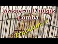 Masteran Khusus Lomba  Mp3 - Mp4 Download