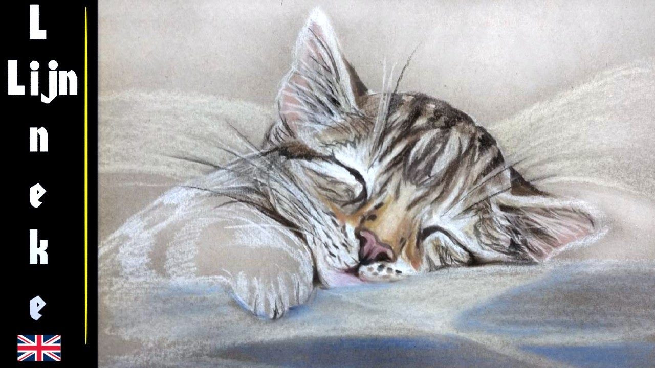 Easy kitten for beginners pastel pencil drawing