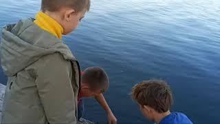 Магнитная рыбалка на Северском Донце