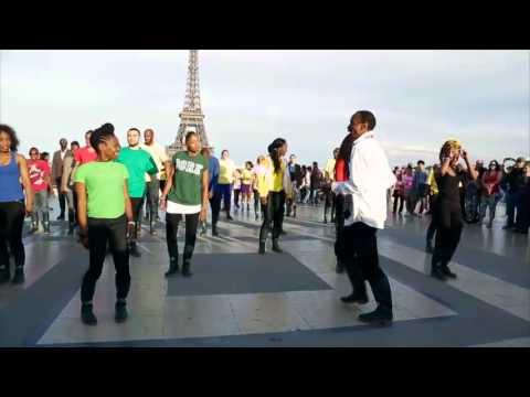 Office du tourisme d 39 afrique du sud flash mob paris - Office du tourisme afrique du sud paris ...