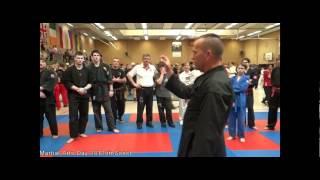 Martial Arts Day 2012 - Reality-Self-Defense (RSD) Grandmaster Bernd Ebers