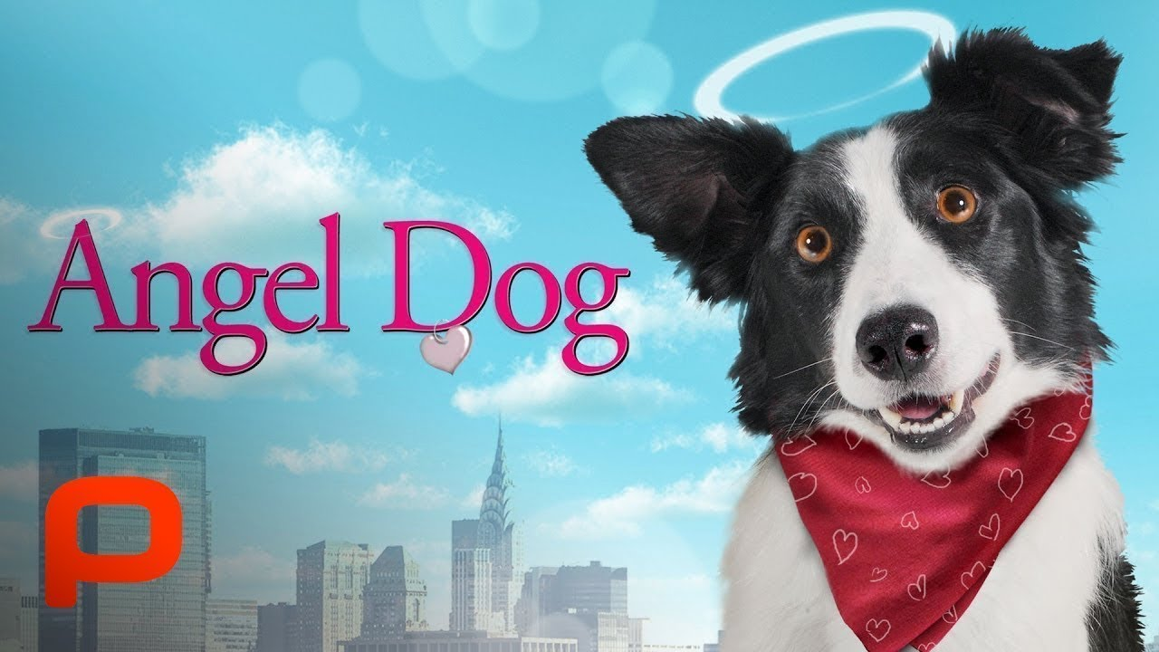 Angel Dog (Full Movie) Family l Drama