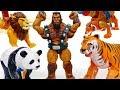 Transform, Animal Robots~! Pororo Friends Are In Danger - ToyMart TV