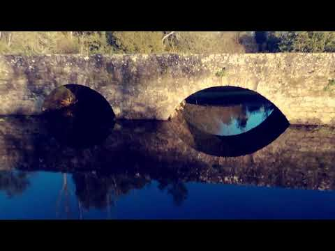 Ponte Medieval de Lamas do Vouga (Drone)