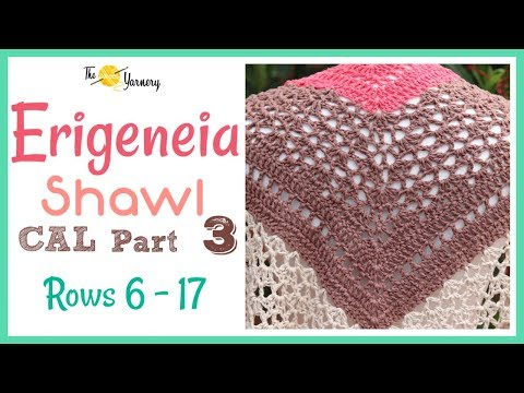 Erigeneia CAL -  Part THREE - The Repeat - rows 6 - 17