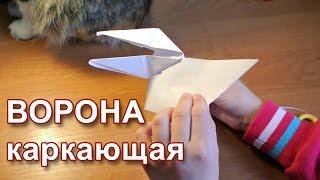 Белая ворона из бумаги (оригами)