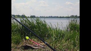 Рибалка в селі Низькі Цевеличі на безкоштовному ставу