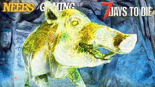 a-giant-infected-pig-named-grace-7-days-to-die-gameplay-series