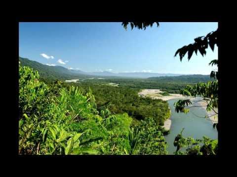 Best tourist attractions in Peru - Puerto Maldonado - Manú National Park