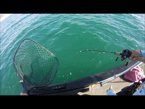 Jigging For Lake Whitefish