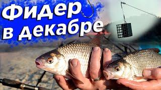 Ловим рыбу на ПИНКУ Готовлю на природе рыбачу и раскрываю секреты осенней ловли на фидер