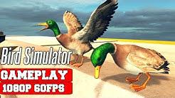 Bird Simulator Gameplay (PC)