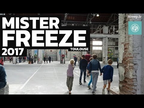Mister Freeze 2017 à Toulouse - Urban Art Contemporary & Graffiti