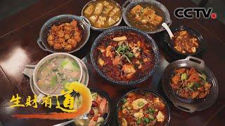 《生财有道》 20210105 四川汶川:羌族风情浓 美味创财富| CCTV财经 - YouTube
