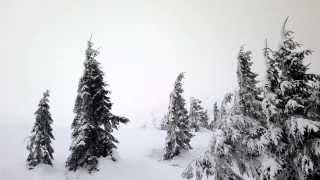 видео Туры по горам Украины