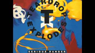 The Teardrop Explodes Serious Danger 12 inch Version