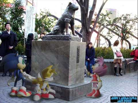 Sonic And His Friends In Real World Youtube