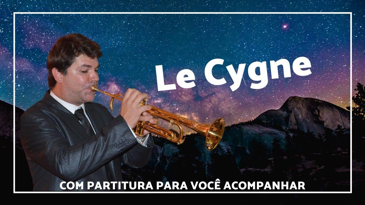 Le Cygne - The Swan (C. Saint Saens) - A Capela