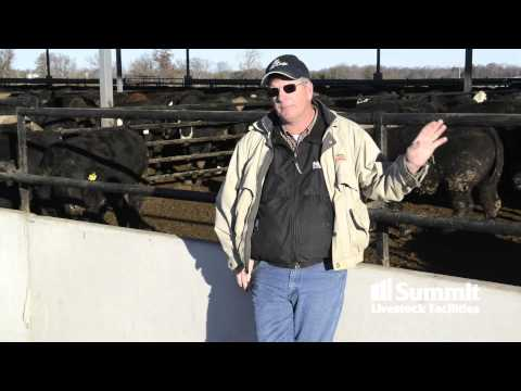 Larry O'Hern explains cattle health benefits of indoor feeding with a monoslope.