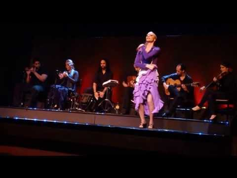 Flamenco dance show in Barcelona, Spain : Part-4/6