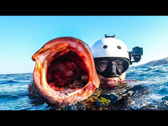 Large Grouper From Deep Underwater Cave |Spearfishing Life 🇬🇷