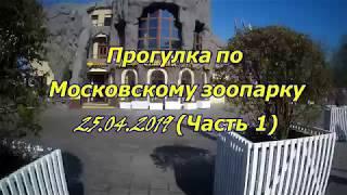 Московский зоопарк апрель 2019