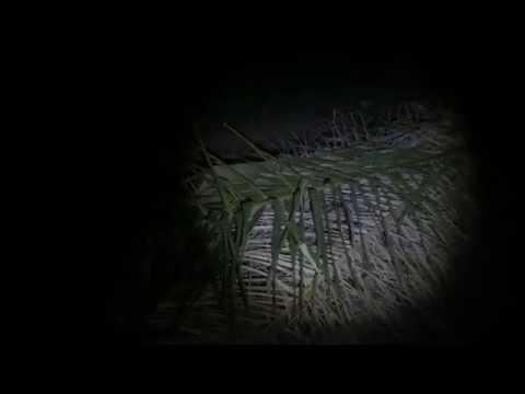 Solo Ambush Search and Rescue Acap (SSARA) Part 1 Full Video