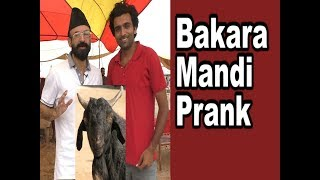 Best Bakra Mandi Prank in Pakistan|Allama Pranks|Lahore TV| in India