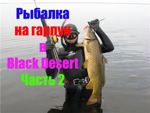 рыба фото альбакор