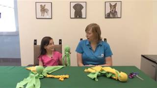 October Kids for Animals Craft