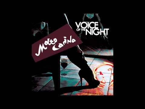 Molto Carina - Voice of the Night