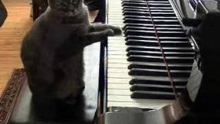 Chiar canta la pian